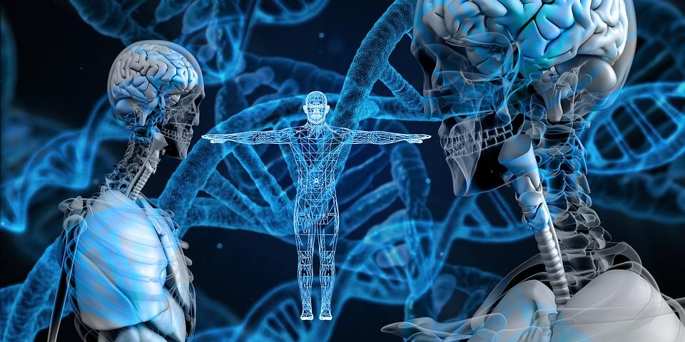 誰說生物界沒有人工智慧的貢獻!聽說它已破解其最大謎團!?(下)